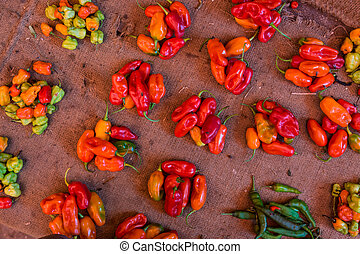 Red paprika being sold at local food market. - Colorful...