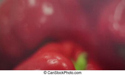 Red paprika close-up - close up of red paprika