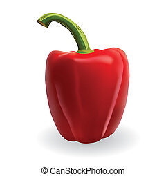 red paprika on the white background