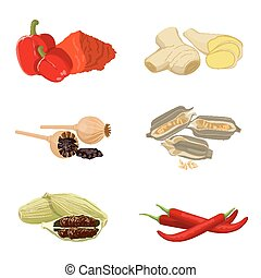 Collection of aromatic spices on white. Vector poster of red paprika, poppy seeds, light piece of ginger, red long chili, sesame. Culinary set for making dishes savory and with special taste