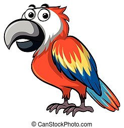 Red parrot on white background