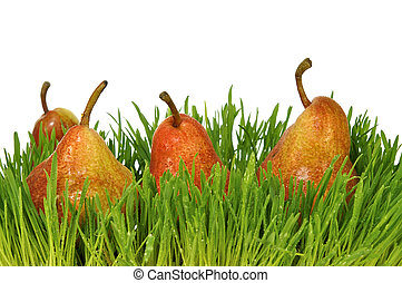 Red pears in a green grass on the white isolated background