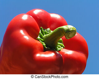 Red pepper against the blue sky
