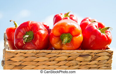 Red pepper in box against the sky