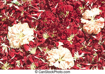 Red petals quater - Red petals with some pink flower. Usable...