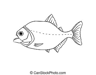 Red piranha vector isolated on white - Red piranha vector...