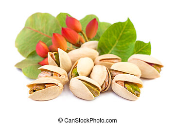 Red pistachio nuts with leaves on white background