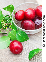 Red plum with green leaf