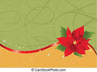 Red poinsettia Christmas backgroun