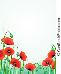 red poppies background - vector red poppies floral...
