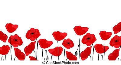 Red poppies in a row. Isolated on white background. Vector illustration.