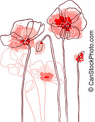 Red poppies on a white background - Red poppies on white...