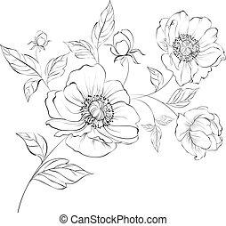 Red Poppy Flower. - Red Poppy Flower Isolated on a White...