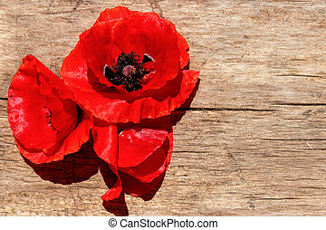 Red poppy flowers on wooden background. Top view, copy space