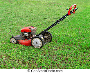 Red Push Lawnmower in Grass