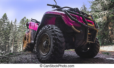 red quad bike in the forest, close-up