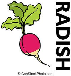 Red Radish - An image of a red radish.