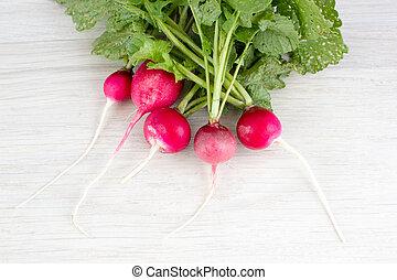 Red radish on light background