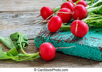 Red radishes with green leaves close-up.