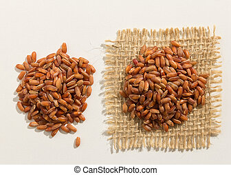 Red Rice seed. Close up of grains spreaded over white table.
