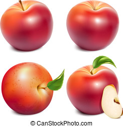 Red ripe apples - Set of photo-realistic vector red apples...