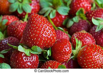 Red ripe fresh strawberries