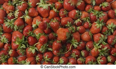 Red ripe juicy strawberry slow falls one by one on a tray ...