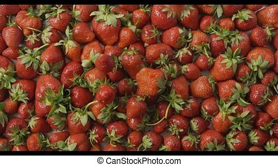 Red ripe juicy strawberry slow falls one by one on a tray with berries made of steel with holes. Berries background. Slow motion video. Top view. Full HD video, 240fps,1080p