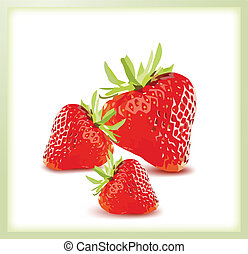 Red Ripe Strawberries. Vector illustration