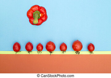 Red ripe tomatoes and top of sweet pepper on a color background