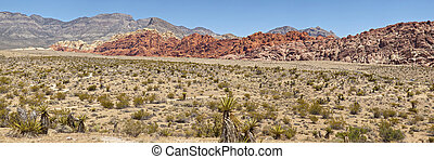 Red Rock Canyon Las Vegas NV.