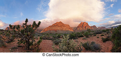 Red Rock Desert Sunrise