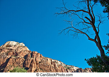 Red rock formations at Zion National Park