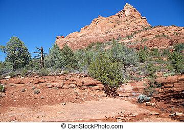 Red Rock Landscape
