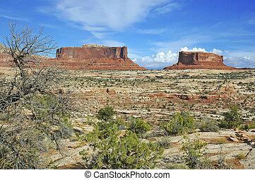 Red rock landscape Southwestern USA
