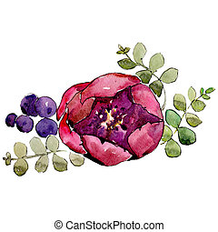 Red rosa. Isolated flower illustration element. Background illustration set. Watercolour drawing aquarelle bouquet.