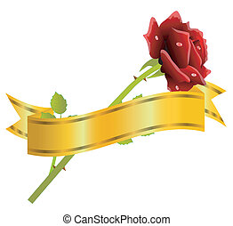 red rose and gold ribbon