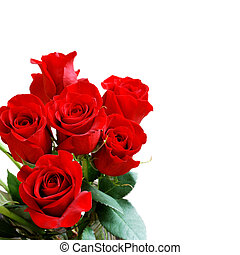 Red Rose Bouquet - Beautiful red roses on a white background...