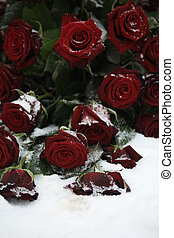 red rose bouquet in the snow