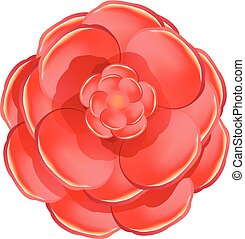 Red rose camellia icon, cartoon style