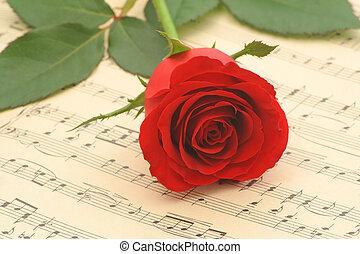 Red rose closeup - Red rose on old sheet music - closeup (...