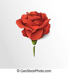 Red rose cut out of paper. Floral background.Vector