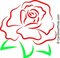 Red rose drawing, illustration, vector on white background