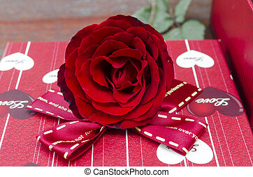 red rose flower with gift box for Valentine's Day