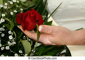 Red Rose & Hand