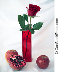 Red rose in a vase