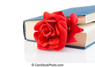 red rose inside of the closed book with space for text