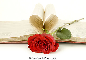 red rose on a book