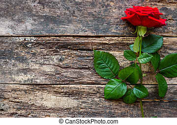 red rose on a wooden background