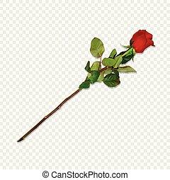 Red Rose on Long Stem Isolated Festive Clip Art - Photo...